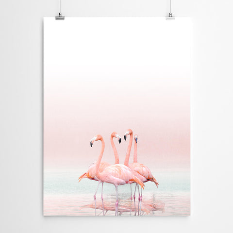 Flamingo Wall Art Canvas Prints