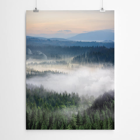 Misty Forest Wall Art
