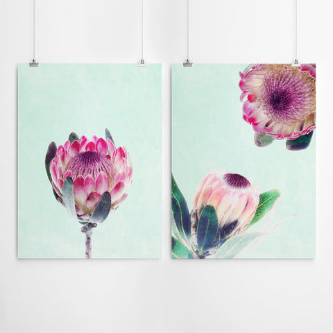 Protea Wall Art Set