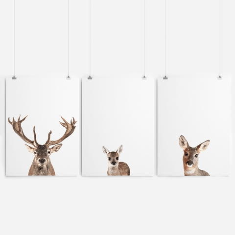 stag-family-woodland-nursery-wall-art