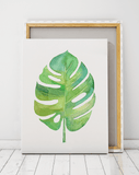 tropical-leaf-pint-cape-town-niky-rahner