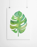 Tropical Leaf Canvas Print