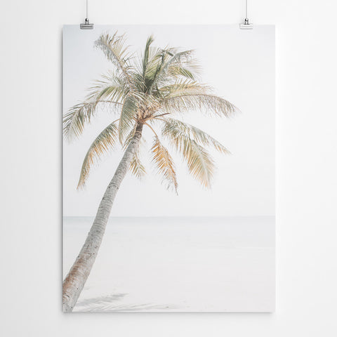 Palm Tree Tropical Beach Art