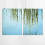 willow-tree-art-print