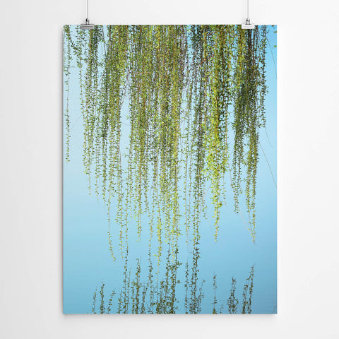 Weeping Willow Wall Art