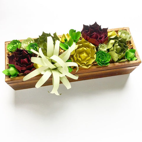 Paper Succulent Planter Box