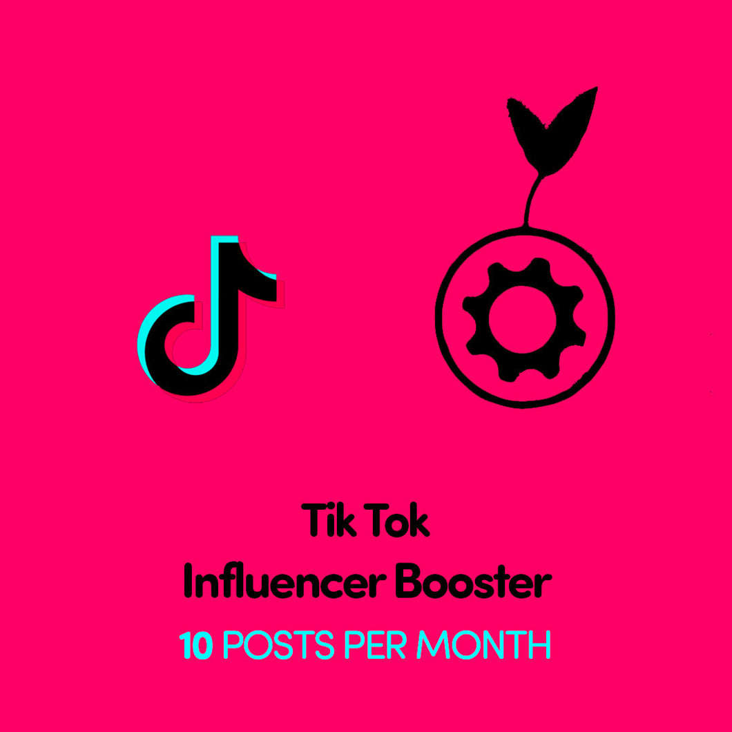 TikTok Influencer Booster x 10 Posts Per Month | Get Seen More | Get Paid More
