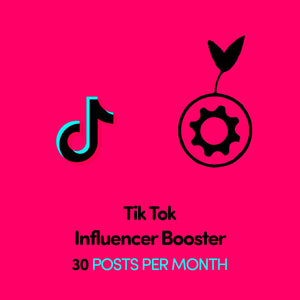 TikTok Influencer Booster x 30 Posts Per Month | Get Seen More | Get Paid More