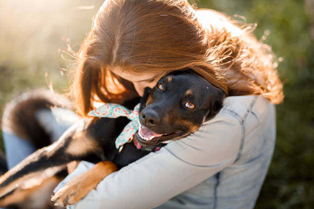 Tips to Help Your Dog Adjust to Your Home
