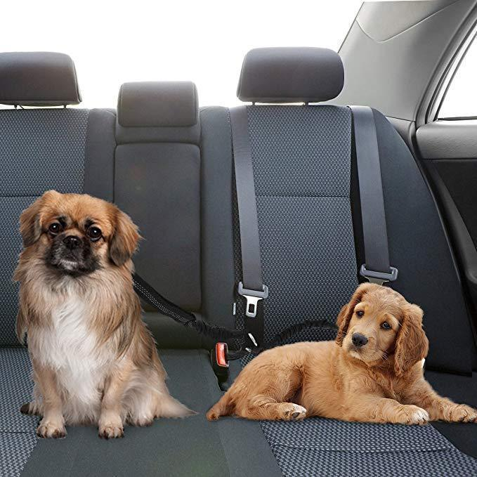 Dog Safety Belt (2 Belts In One)