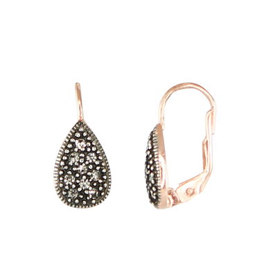 Crystal Teardrop & Rose Gold Earrings