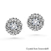 Cloris Earrings (Clear Crystal, Pure Rhodium Plated) - Lush Addiction