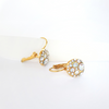 Eternity Earrings Clear Crystal 18K Gold Plated Lush Addiction Crystals From Swarovski Model