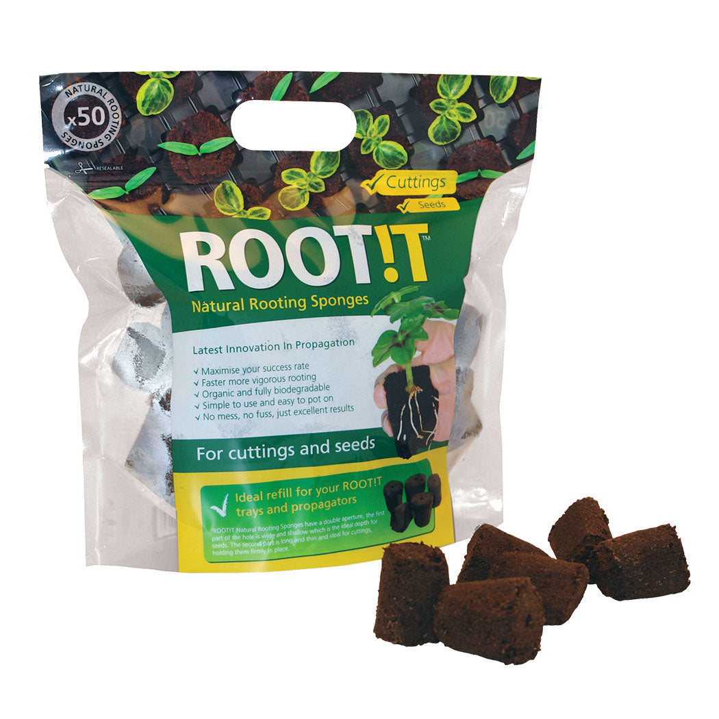 ROOT!T Natural Rooting Sponges