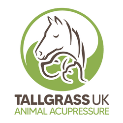 Tallgrass Animal Acupressure UK