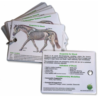 Equine Emergency Card Deck