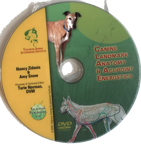 Canine Acupoint Energetics & Landmark Anatomy - DVD