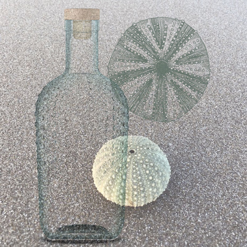 Kina Shell Gin bottle