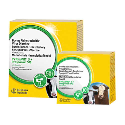 Pyramid 5 + Presponse SQ - Animal Health Express
