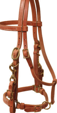 Halter Bridle Combo - Animal Health Express