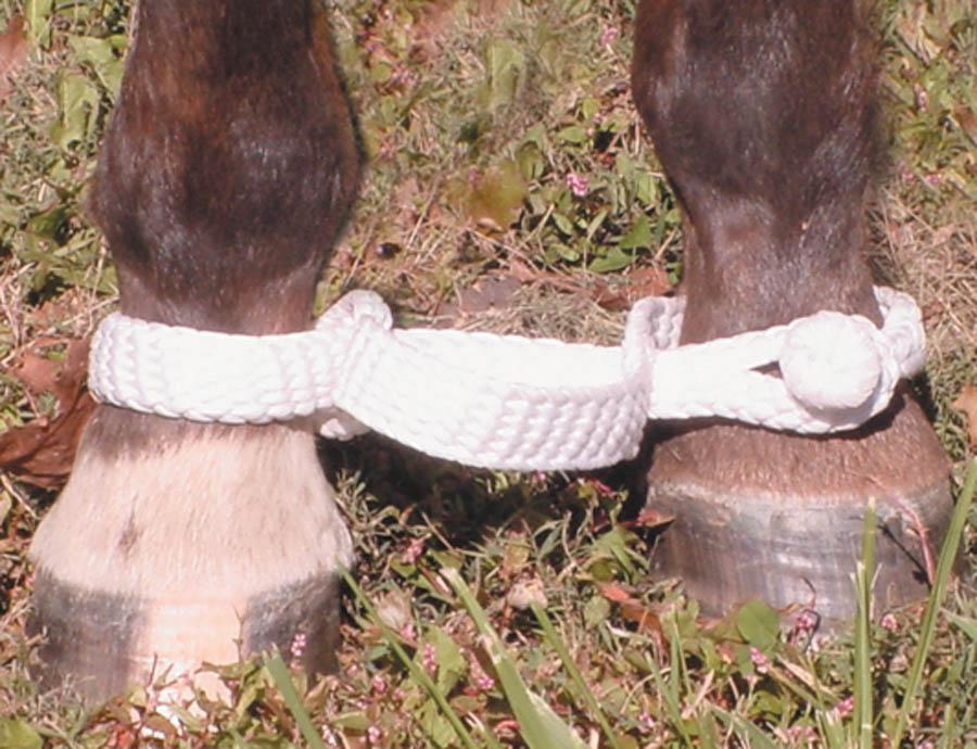 Mustang Braided Hobble - Animal Health Express