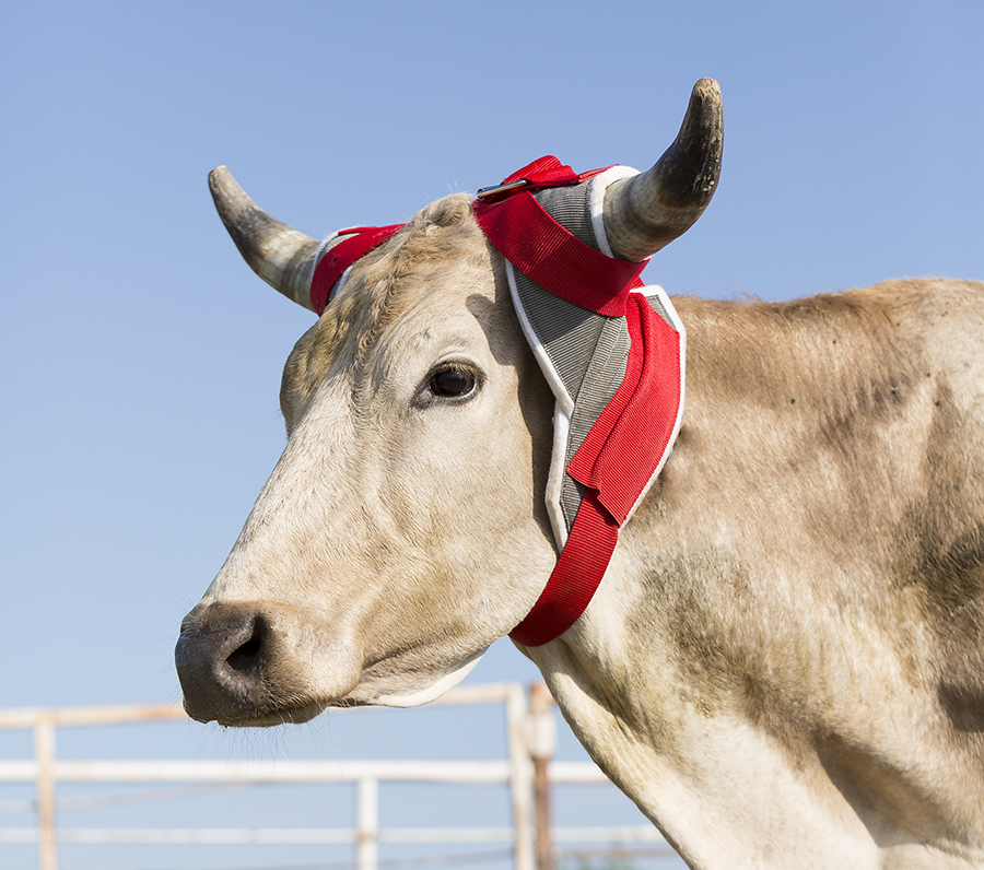 Load image into Gallery viewer, Mustang Horn Wrap - Animal Health Express