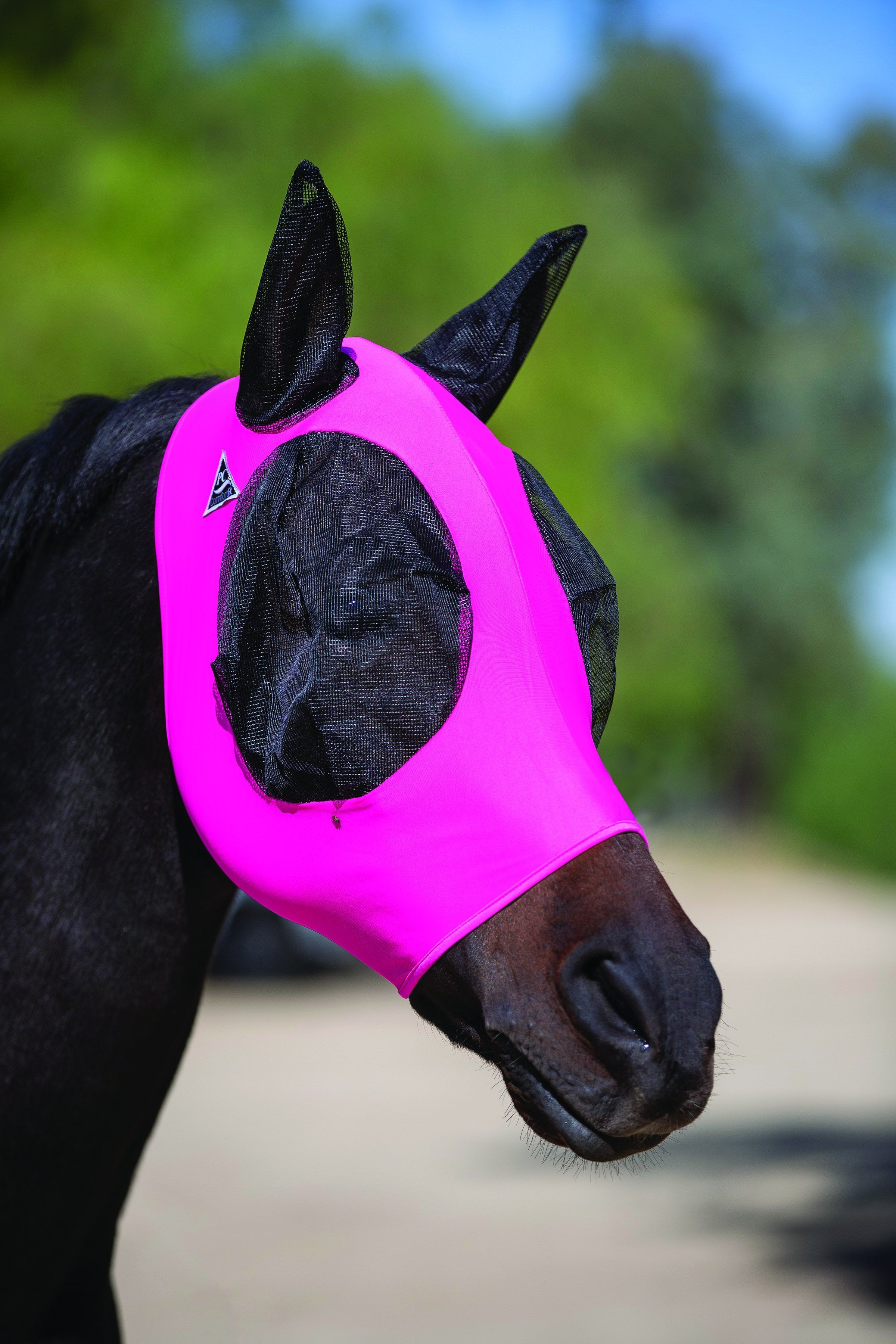 Load image into Gallery viewer, Professional's Choice Lycra Fly Mask - Animal Health Express