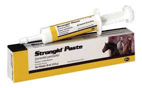 Strongid Paste Wormer - Animal Health Express