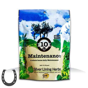 Silver Lining #10 Maintenance for Horses