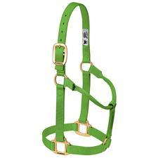 Weaver Leather Non-Adjustable Nylon Halter Weanling/Pony