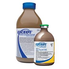 Excede - Animal Health Express
