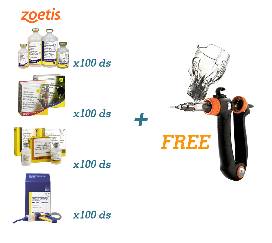 Fall Cattle Works - Zoetis + FREE VetArt Vaccinator - Animal Health Express