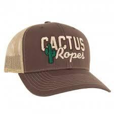 Load image into Gallery viewer, Cactus Caps - Animal Health Express