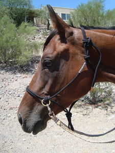 Rope Halter with Rings - Animal Health Express
