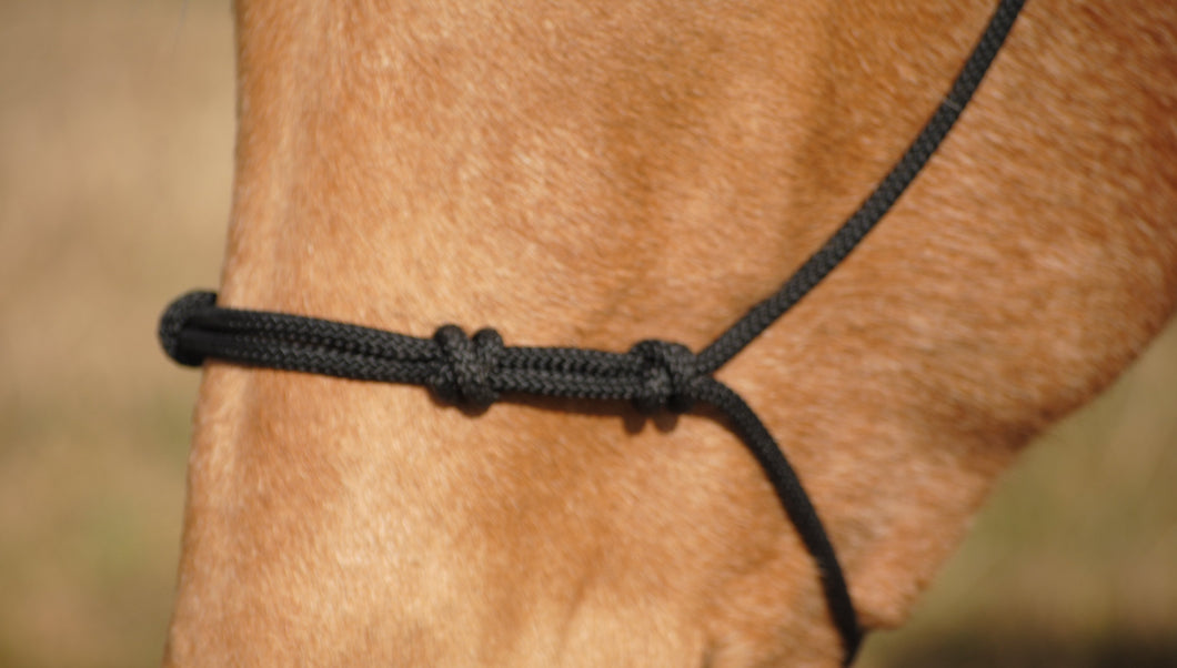 4 Knot Rope Halter - Animal Health Express
