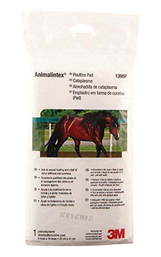 Animalintex Poultice Pad - Animal Health Express