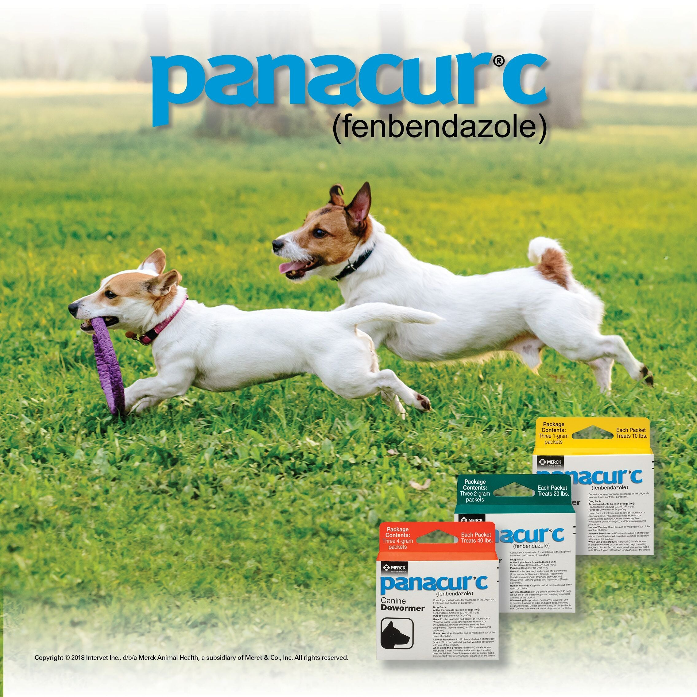 Load image into Gallery viewer, SafeGuard Canine Dewormer - Animal Health Express