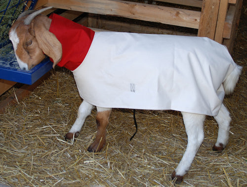 Goat Blankets - Animal Health Express