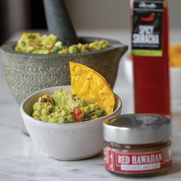 Fiesta Guacamole Recipe Kit