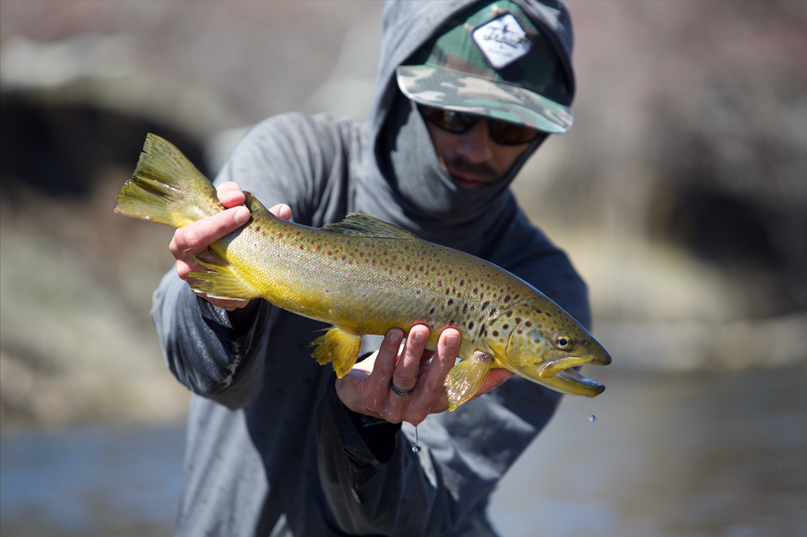 FIELD TEST FRIDAY: TROUT HUNTING W/ TROUT HUNTING