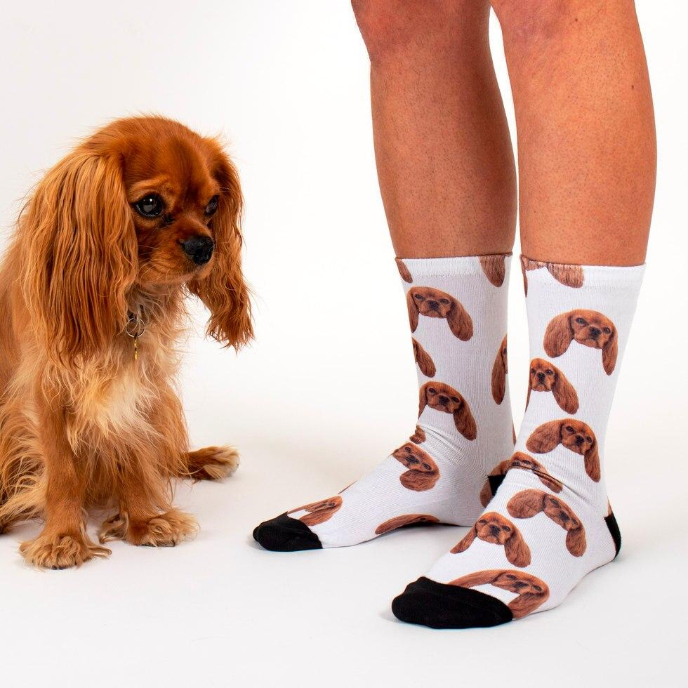 Sock Your Pet - Personalised Socks