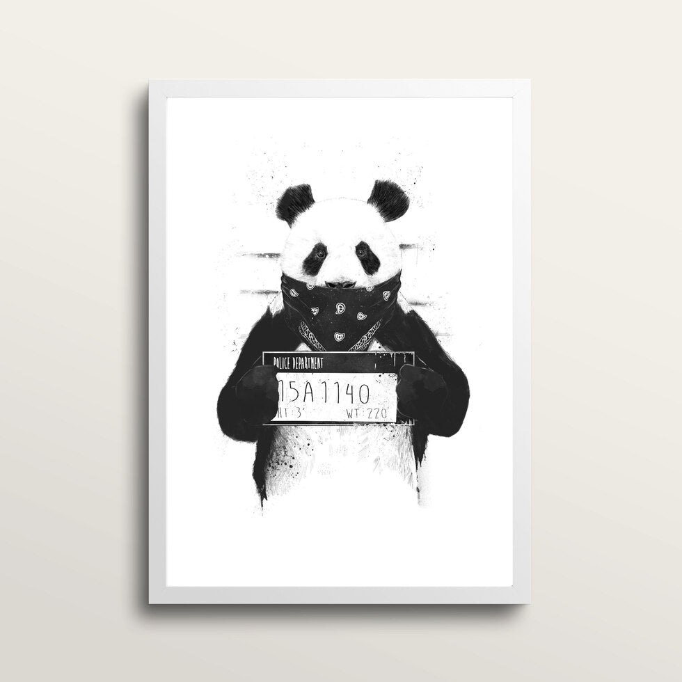Bad Panda - Art Print - in medium A3 white frame