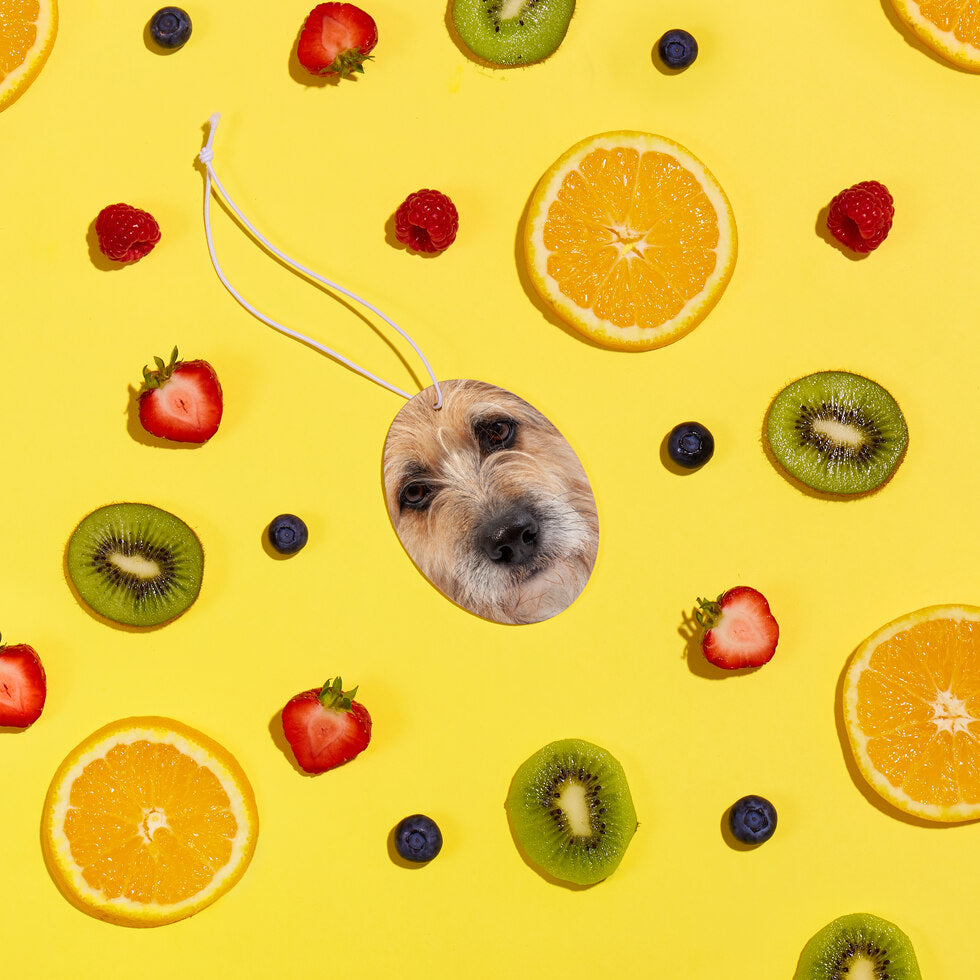 Pet Fresh Face – Personalised Pet Air Freshener - Set of 3 Fruit Salad