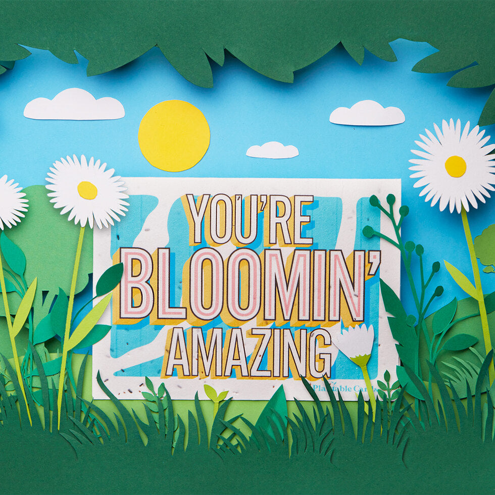 Plantable Cards - You're Bloomin' Amazing