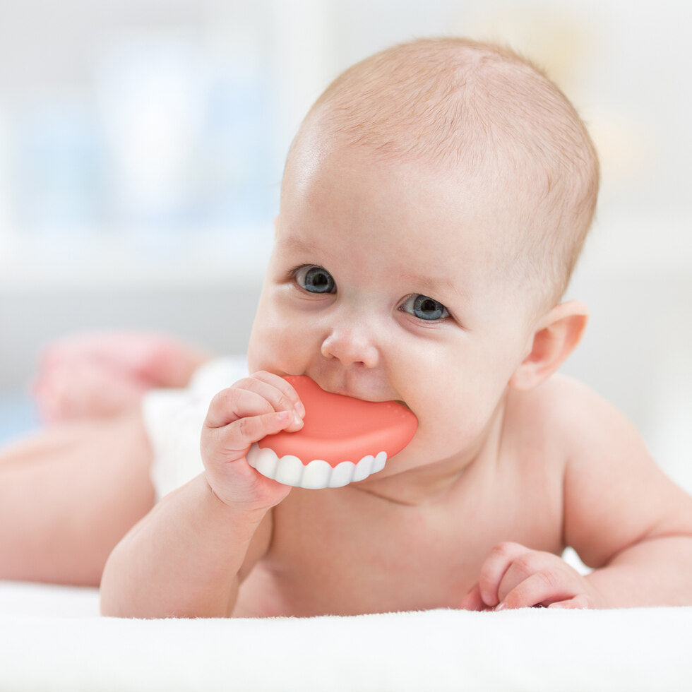 False Teether