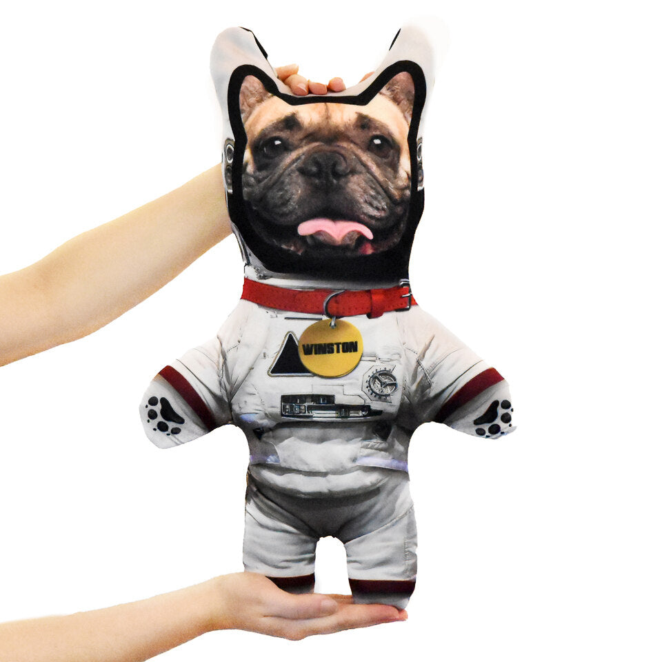 Pet Mini Me Astronaut Dog - Personalised Dog