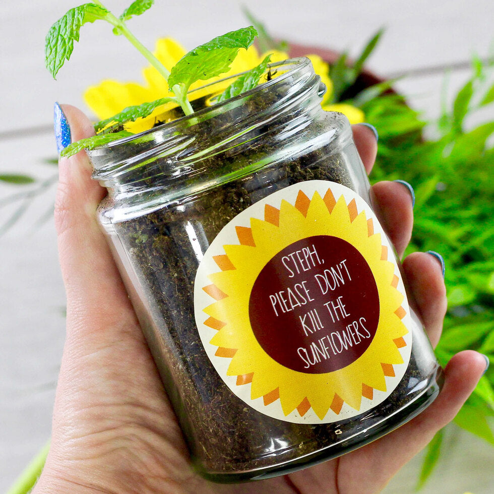 Personalised Grow Your Own Plant Jar - Sunflower
