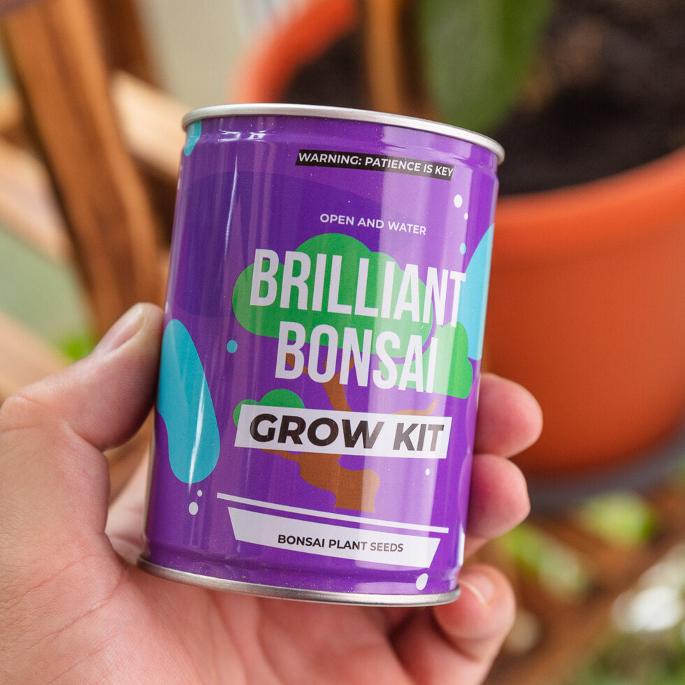 Brilliant Bonsai Grow Kit