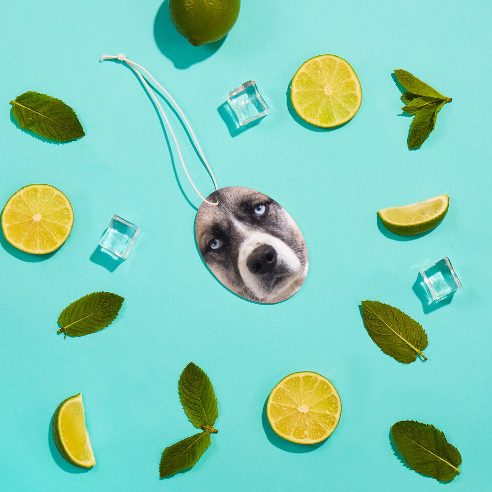 Pet Fresh Face – Personalised Pet Air Freshener - Set of 3 Mojito