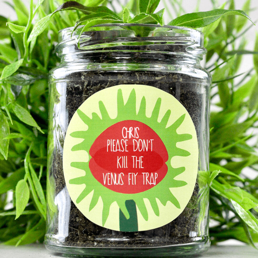 Personalised Grow Your Own Plant Jar - Venus Fly Trap